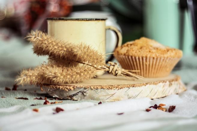 rodaja de madera usos decoracion desayuno fotografia