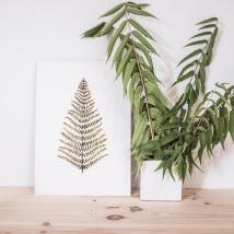 mimesis-pipolart-pipol-art-decoracion-tropical-hojas-vegetacion-lamina-helecho-print