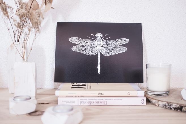 mimesis-pipolart-pipol-art-decoracion-tropical-lamina-ilustracion-libelula