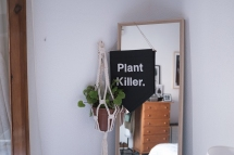 banderin-banderola-wall-banner-pipolart-pipol-art-hecho-a-mano-disenado-en-barcelona-plant-killer-colgador-planta-macrame