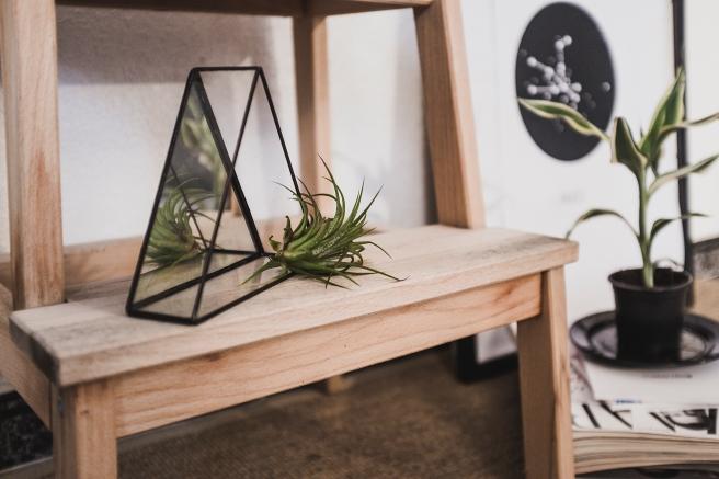 triangulos-espejo-minimal-terrario-planta-area-tillandsia-3-tamanos-pipolart-pipol-art