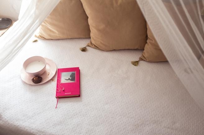 bizcocho-centeno-integral-sin-azucar-calabaza-chocolate-cacao-pipolart-pipol-art-slim-aarons-diary