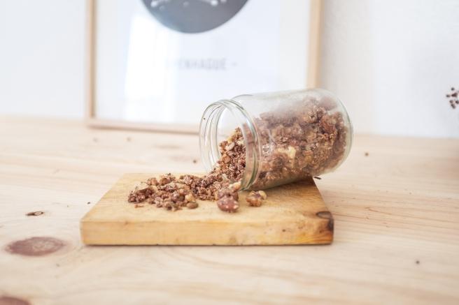 granola-frutos-secos-semillas-cacao-coco-receta-homemade