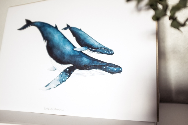 lamina print ballena orca acuarela nathalie ouederni pipol art.jpg