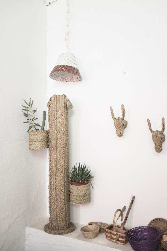 cactus macetero fibra natural mimbre palma pipolart pipol art